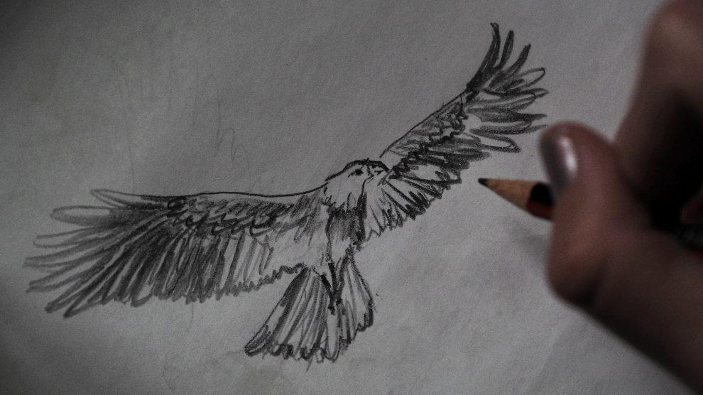 zeichnung eines adlers